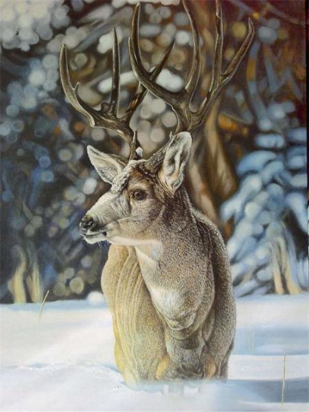 汪农新野生动物超写实油画创世界纪录