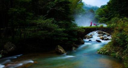 4a景区神农谷国家森林公园风景