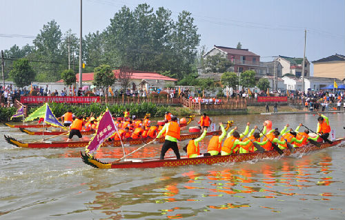 南京八卦洲农业嘉年华创意启幕,欢动小江河龙舟竞渡