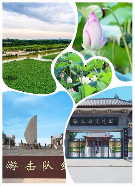 """旅游攻略   在微山湖感受""""江北水乡""""的独特魅力!"""